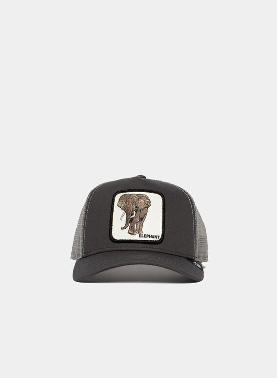 CAPPELLO ELEPHANT, OLI, medium